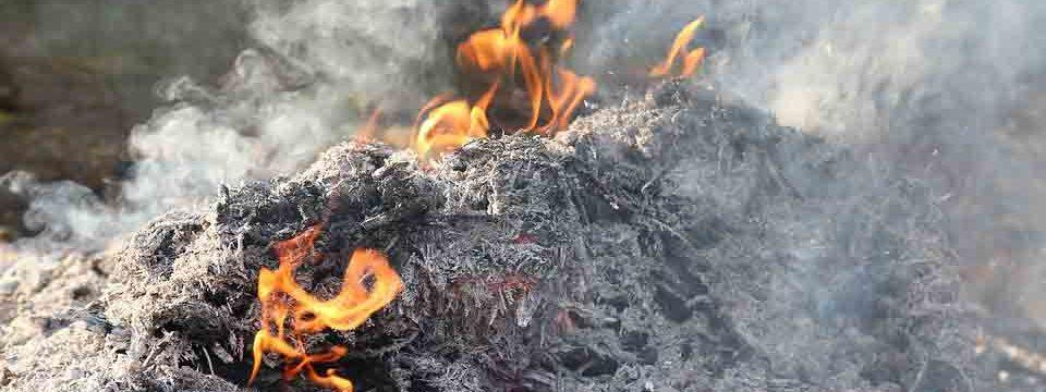 Spalarnie śmieci są przeżytkiem wg Michała Pacy. Czym je zastąpić?