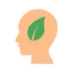 posnania - produkty ekologiczne gdzie je kupowac